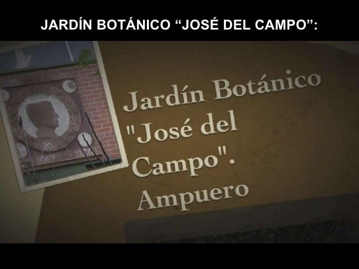"""JARDÍN BOTÁNICO """"JOSÉ DEL CAMPO"""":<br />"""
