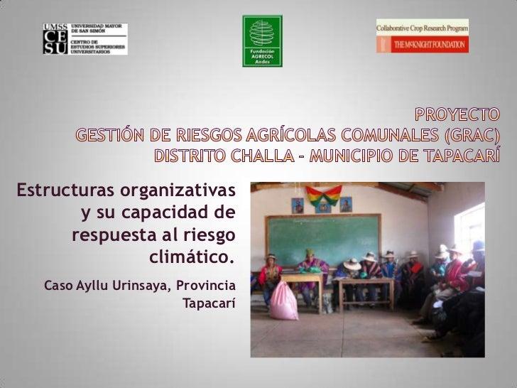 ProyectoGESTIÓN DE RIESGOS AGRÍCOLAS COMUNALES (GRAC) Distrito Challa - Municipio de Tapacarí<br />Estructuras organizativ...