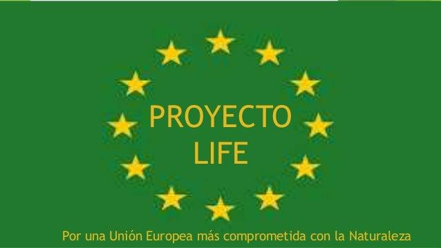 presentaci n proyecto life