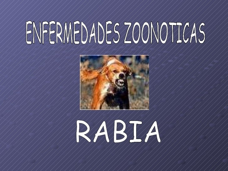ENFERMEDADES ZOONOTICAS RABIA