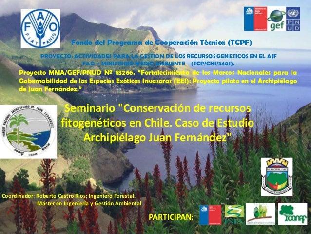 Fondo del programa de Cooperación Técnica (TCPF)