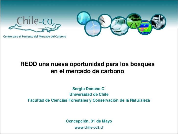 REDD una nueva oportunidad para los bosques en el mercado del carbono, Sergio Donoso
