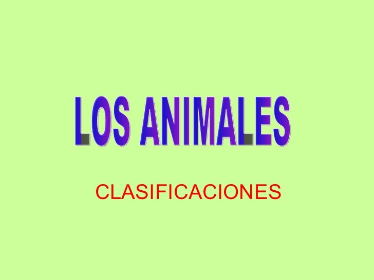 CLASIFICACIONES LOS ANIMALES