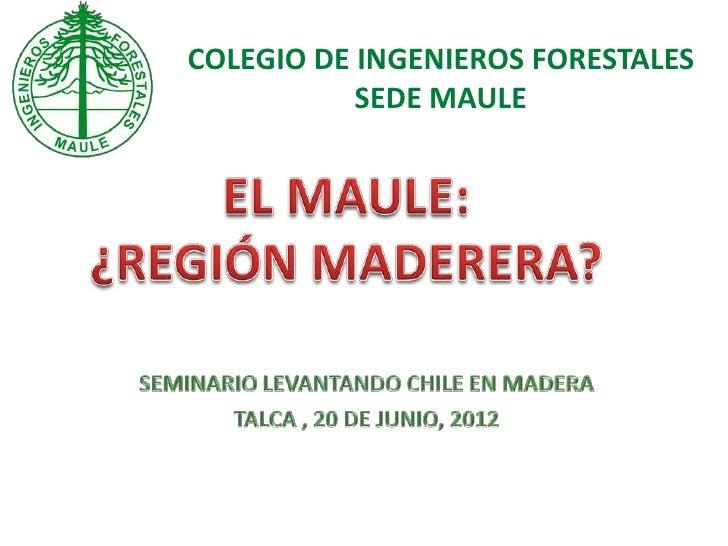 COLEGIO DE INGENIEROS FORESTALES           SEDE MAULE