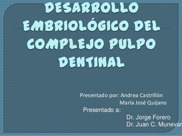 Desarrollo complejo pulpo dentinal