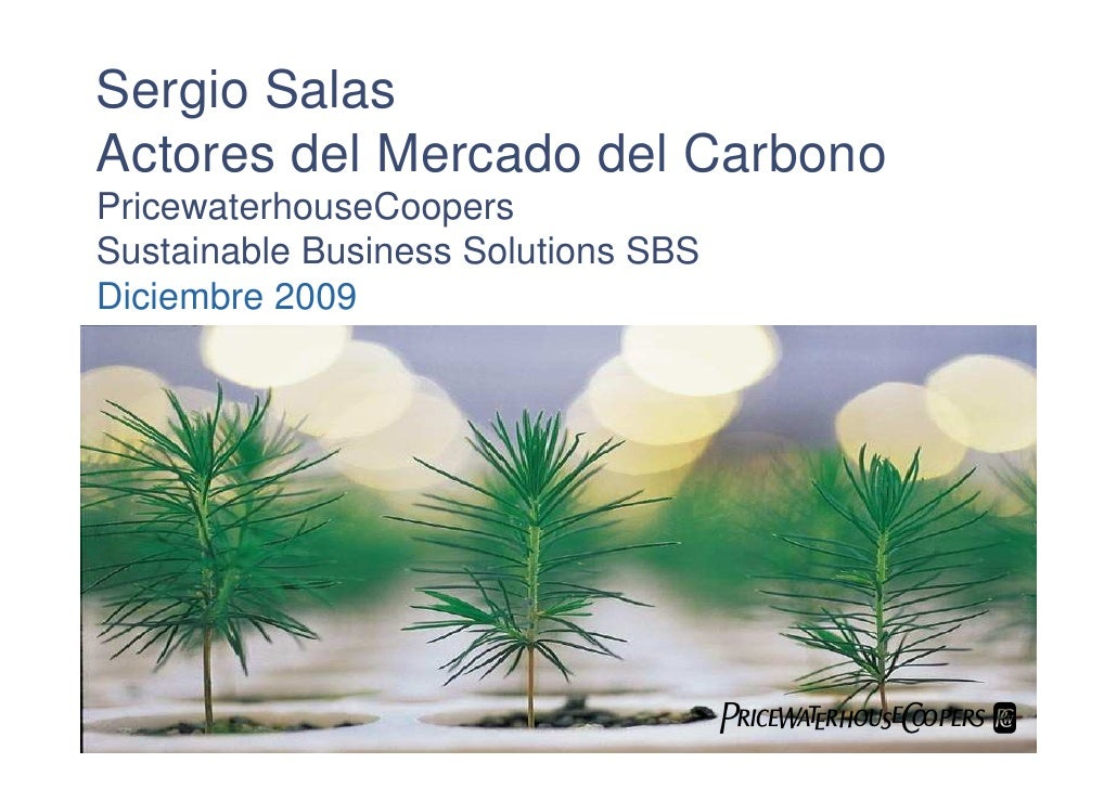 Sergio Salas Actores del Mercado del Carbono PricewaterhouseCoopers Sustainable Business Solutions SBS Diciembre 2009     ...