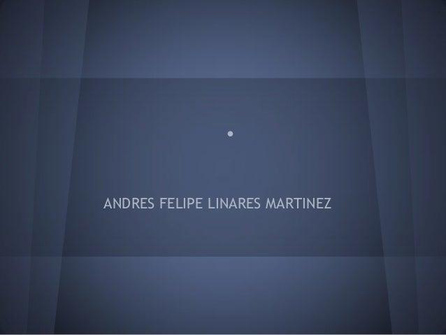 . ANDRES FELIPE LINARES MARTINEZ