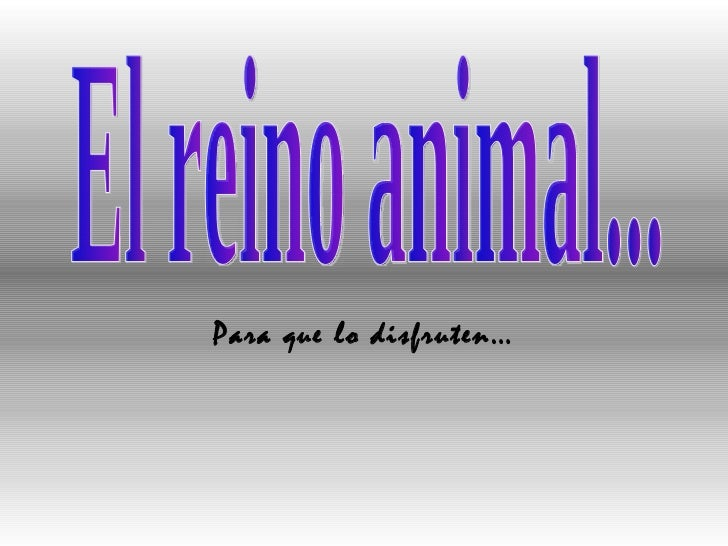 El reino animal... Para que lo disfruten…