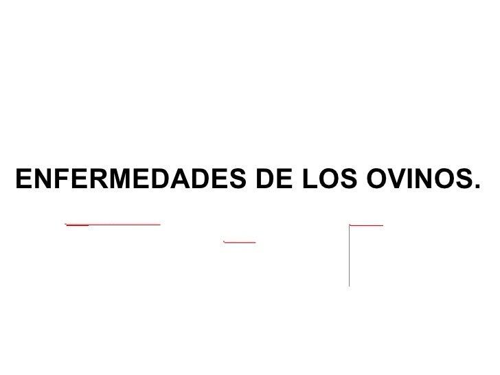 ENFERMEDADES DE LOS OVINOS.