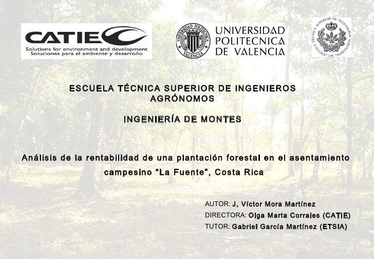 ESCUELA TÉCNICA SUPERIOR DE INGENIEROS AGRÓNOMOS INGENIERÍA DE MONTES Análisis de la rentabilidad de una plantación forest...