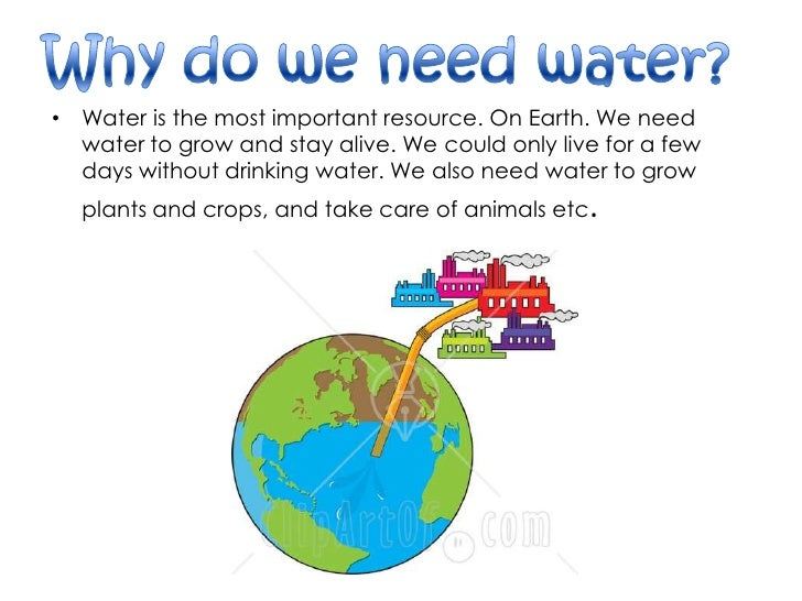 How Much Water Do Humans Need To Drink A Day