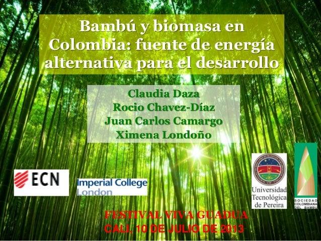 Bambú y biomasa en Colombia: fuente de energía alternativa para el desarrollo Claudia Daza Rocio Chavez-Díaz Juan Carlos C...