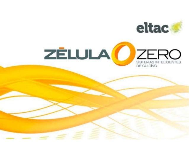 Índice Introducción Características del proyecto – ¿Quienes forman parte del proyecto? – ¿Por qué Zélula Zero? – Ubicación...