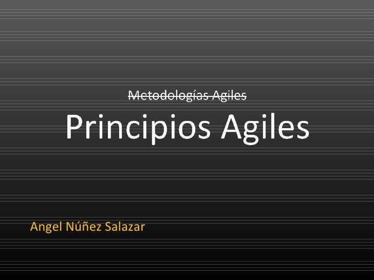 Principios Ágiles