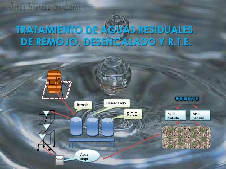 TRATAMIENTO DE AGUAS RESIDUALES.DE REMOJO, DESENCALADO Y R.T.E.<br />CULTIVO<br />Desencalado<br />Remojo<br />R.T.E<br />...