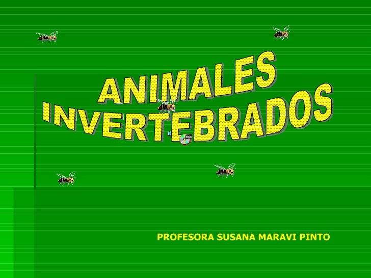 ANIMALES INVERTEBRADOS PROFESORA SUSANA MARAVI PINTO