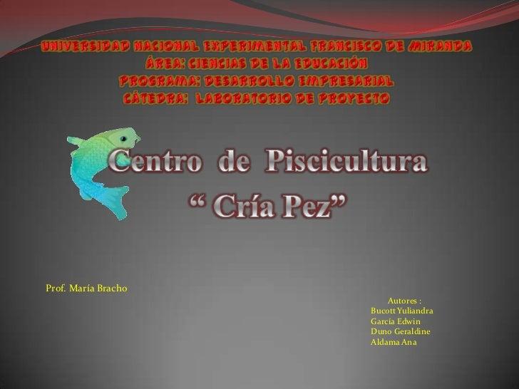 Prof. María Bracho                         Autores :                     Bucott Yuliandra                     García Edwin...