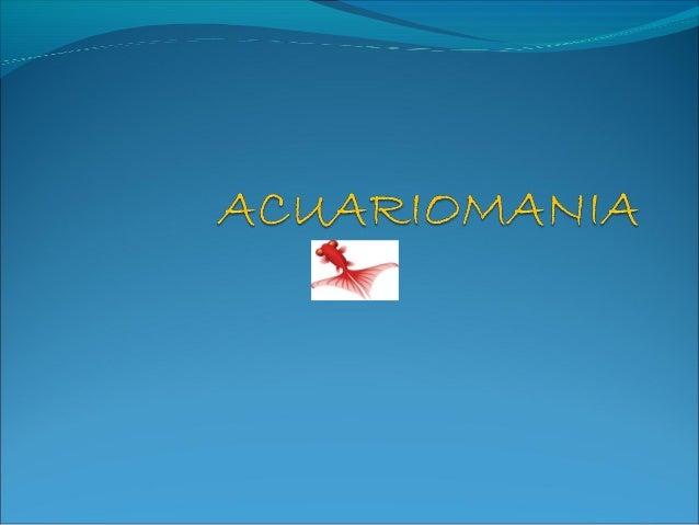 Beneficios de tener un acuario• Tener un Acuario esuno de los hobbys máspopulares en todo elmundo, y por unabuena razón. Y...