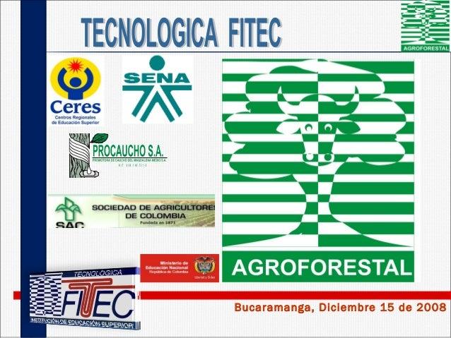 Bucaramanga, Diciembre 15 de 2008 N IT 8 0 0 .1 4 6 .7 3 1 -5