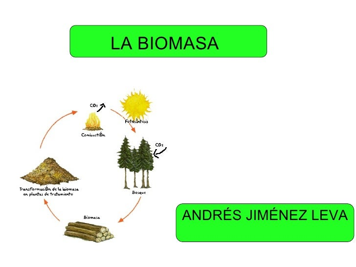 LA BIOMASA ANDRÉS JIMÉNEZ LEVA
