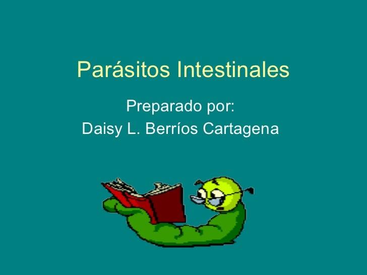 Parásitos Intestinales Preparado por: Daisy L. Berríos Cartagena