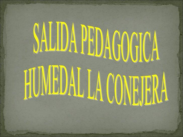 SALIDA PEDAGOGICA  HUMEDAL LA CONEJERA