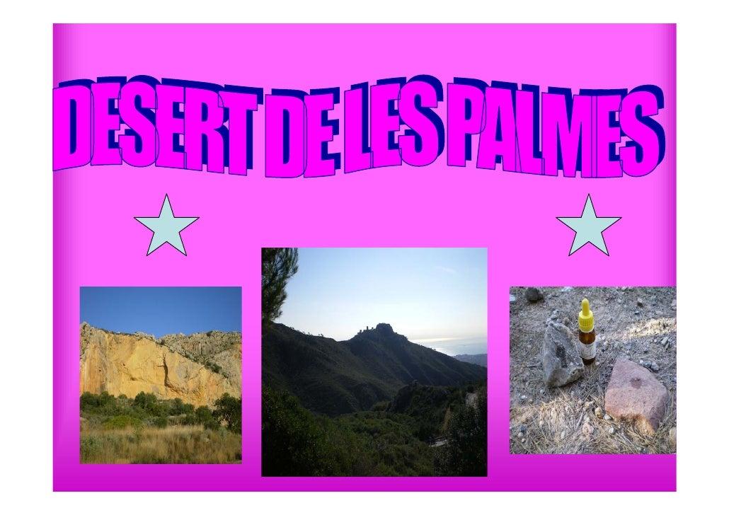 • Las características   litológicas,estratigráficas,tectónicas y   geomorfológicas hacen del desert una zona de   especial...