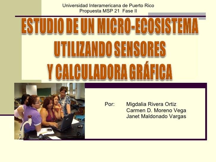 Por:  Migdalia Rivera Ortiz Carmen D. Moreno Vega Janet Maldonado Vargas Universidad Interamericana de Puerto Rico Propues...