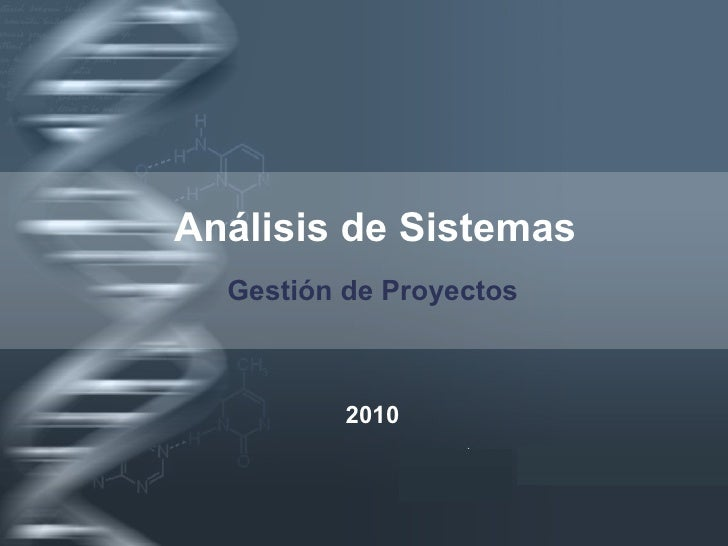 Analisi de Sistemas - Gestion de proyectos