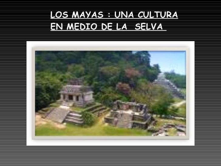 LOS MAYAS : UNA CULTURA EN MEDIO DE LA  SELVA