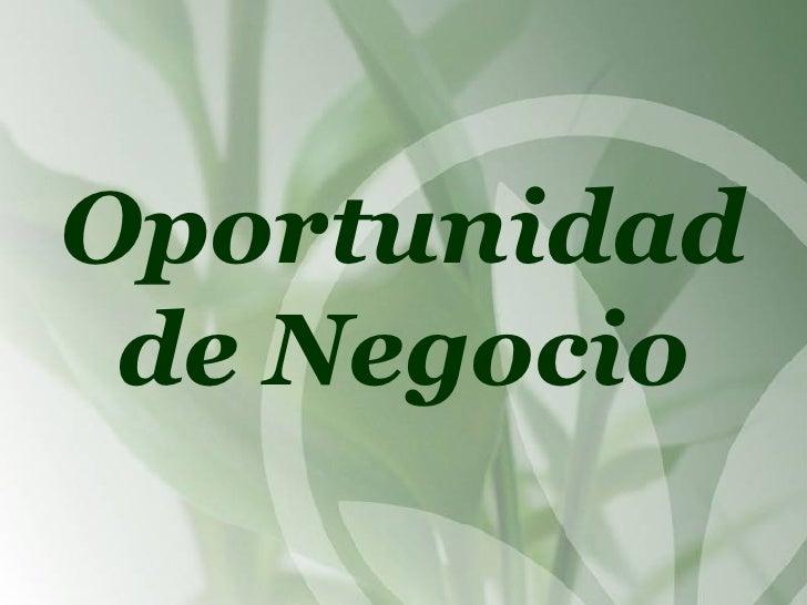 Presentacion Oportunidad Negocio