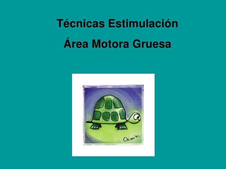 Técnicas Estimulación <br />Área Motora Gruesa<br />