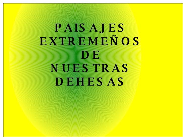 PAISAJES EXTREMEÑOS DE NUESTRAS DEHESAS
