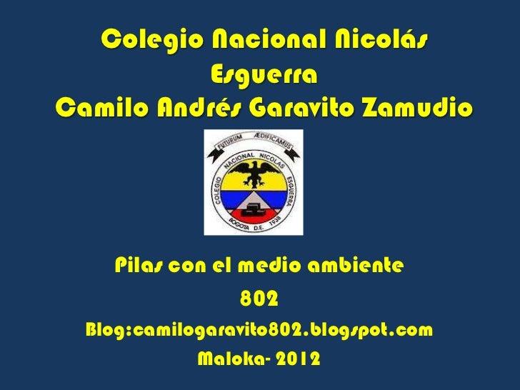 Colegio Nacional Nicolás          EsguerraCamilo Andrés Garavito Zamudio    Pilas con el medio ambiente                 80...