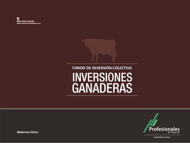 FONDO DE INVERSIÓN COLECTIVA