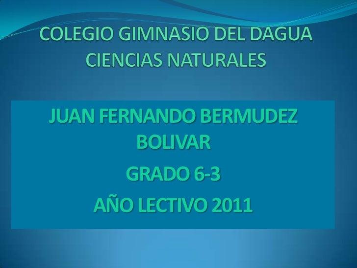 JUAN FERNANDO BERMUDEZ         BOLIVAR        GRADO 6-3    AÑO LECTIVO 2011