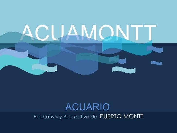 ACUAMONTT ACUARIO   Educativo y Recreativo de  PUERTO MONTT
