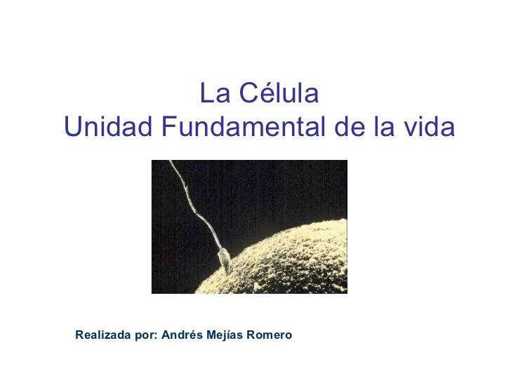 La CélulaUnidad Fundamental de la vidaRealizada por: Andrés Mejías Romero