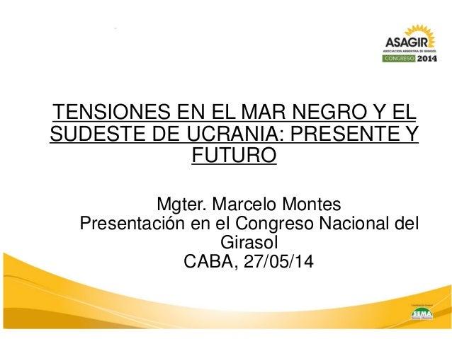 Mgter. Marcelo Montes  Presentación en el Congreso Nacional del Girasol  CABA, 27/05/14  TENSIONES EN EL MAR NEGRO Y EL SU...