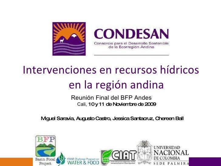Intervenciones en recursos hídricos en la región andina