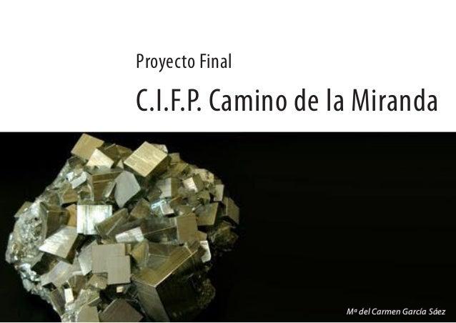 C.I.F.P. Camino de la Miranda Proyecto Final Mª del Carmen García Sáez