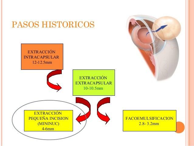 tipos de esteroides para el cuerpo