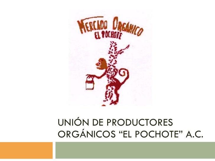 """UNIÓN DE PRODUCTORES ORGÁNICOS """"EL POCHOTE"""" A.C."""