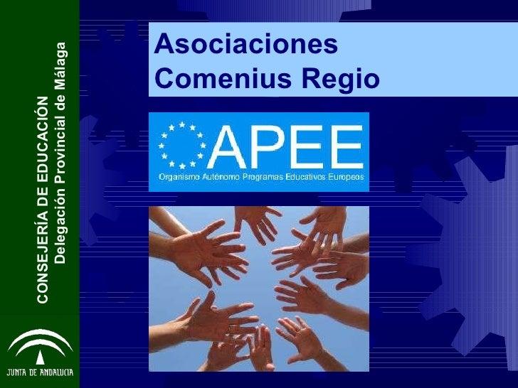 Asociaciones  Comenius Regio CONSEJERÍA DE EDUCACIÓN  Delegación Provincial de Málaga