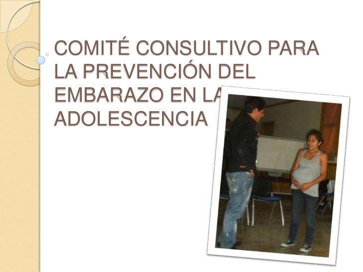 COMITÉ CONSULTIVO PARA LA PREVENCIÓN DEL EMBARAZO EN LA ADOLESCENCIA <br />