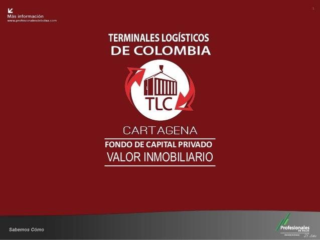 Fondo Inmobiliario FONDO DE CAPITAL PRIVADO VALOR INMOBILIARIO 1