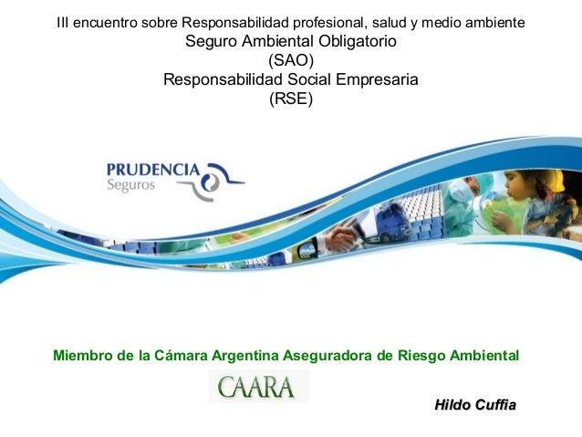 III encuentro sobre Responsabilidad profesional, salud y medio ambiente Seguro Ambiental Obligatorio (SAO) Responsabilidad...