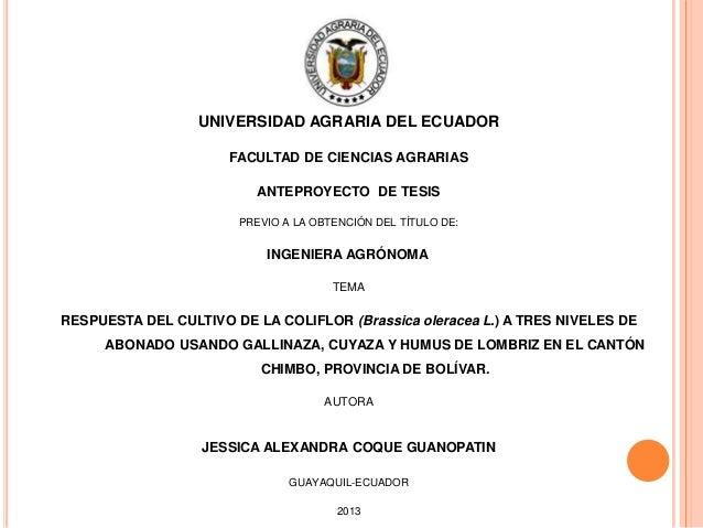 UNIVERSIDAD AGRARIA DEL ECUADOR FACULTAD DE CIENCIAS AGRARIAS ANTEPROYECTO DE TESIS PREVIO A LA OBTENCIÓN DEL TÍTULO DE:  ...