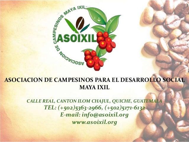 ASOCIACION DE CAMPESINOS PARA EL DESARROLLO SOCIAL MAYA IXIL CALLE REAL, CANTON ILOM CHAJUL, QUICHE, GUATEMALA TEL: (+502)...