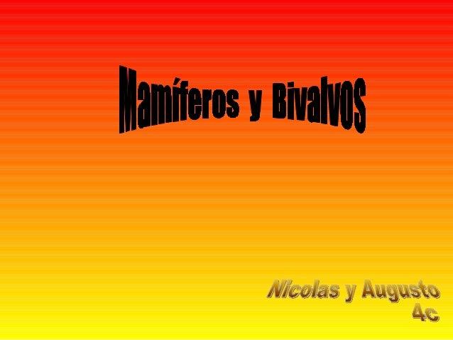 Presentacion de augusto y nicolass 4c